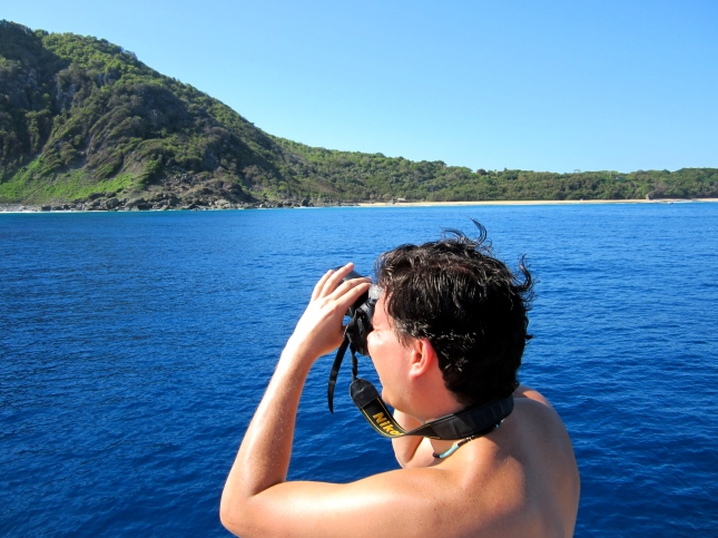 Searching for marine fish and dolphins