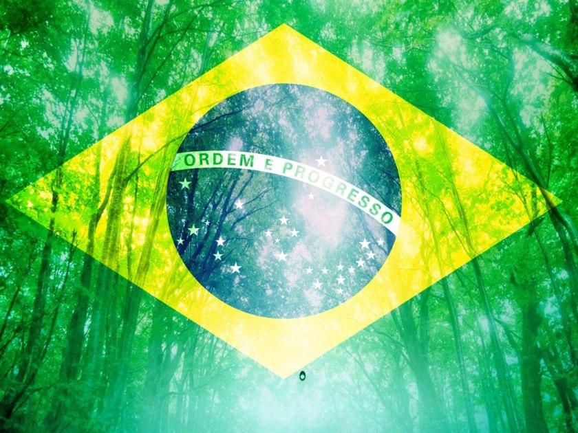 Brasil_MeioAmbiente2