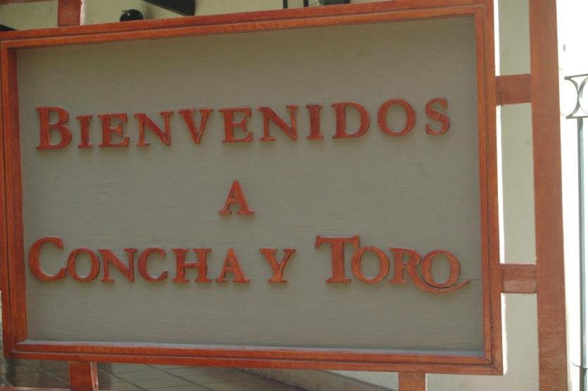 Concha y Toro9